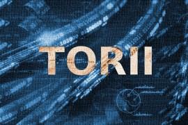 比Mirai更厉害的物联网僵尸病毒Torii现身,但尚没有明确攻击目标