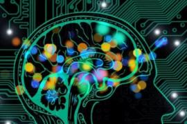 加拿大隐私监管机构发布有关规范AI使用的建议